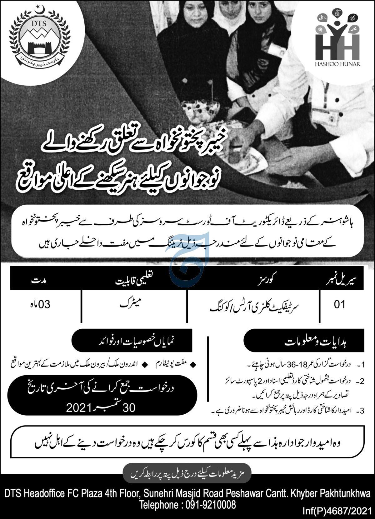 Hashoo Hunar Peshawar Offering Professional Courses