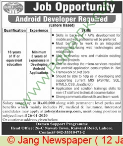 Damen Support Programme jobs newspaper ad for Android Developer in Lahore