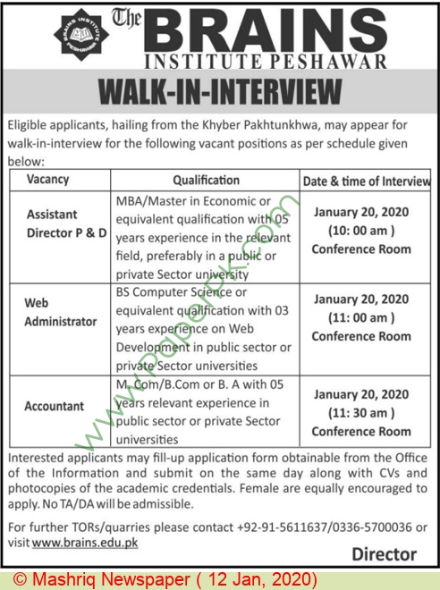 Brains Institute jobs newspaper ad for Accountant in Peshawar