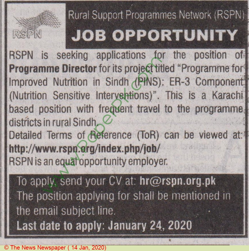 Rural Support Programmes Network jobs newspaper ad for Programme Director in Karachi