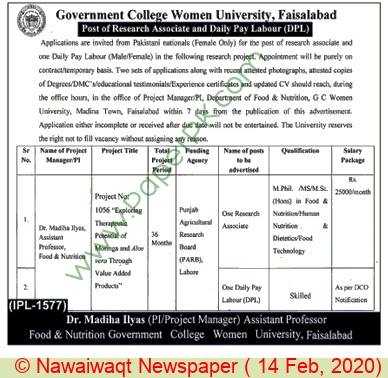 Government College Women University jobs newspaper ad for Research Associate in Faisalabad