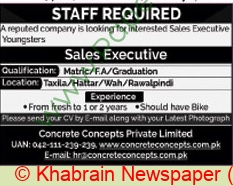Concrete Concepts Private Limited jobs newspaper ad for Sale Executive in Lahore