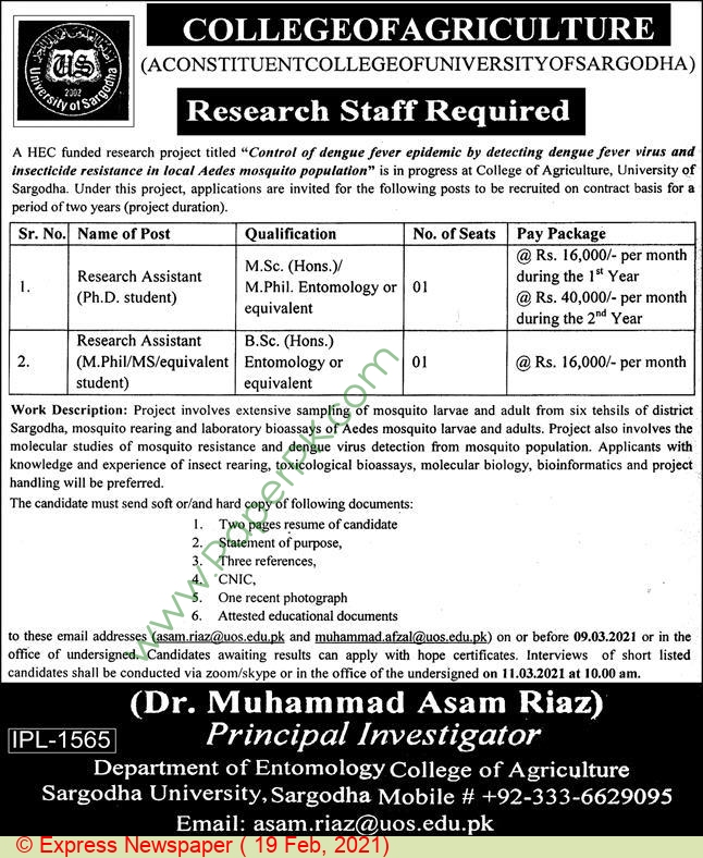 College Of Agriculture jobs newspaper ad for Research Assistant in Sargodha on 2021-02-19