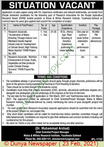Maize & Millets Research Institute jobs newspaper ad for Research Associate in Sahiwal on 2021-02-23