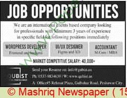 Qubist jobs newspaper ad for Accountant in Peshawar on 2021-09-15