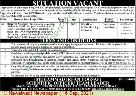 Agriculture Department Sahiwal Jobs For Research Associate advertisemet in newspaper on September 16,2021