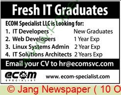 Ecom Specialist jobs newspaper ad for Web Developer in Karachi on 2021-10-10