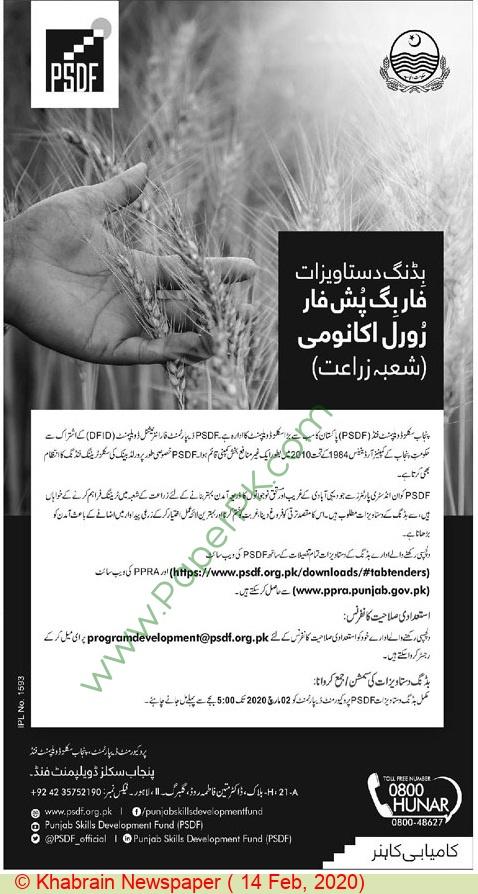 Psdf Lahore Tender Notice