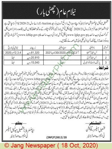 Tehsil Municipal Administration Buner Auction Notice