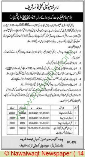 Municipal Committee Taunsa Sharif Auction Notice