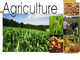 Agriculture Extension Tenders