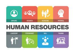 Director Human Resource jobs in Pakistan