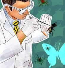 Entomologist jobs in Pakistan